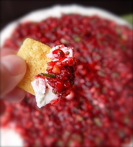 SPICY CRANBERRY CREAM CHEESE DIP